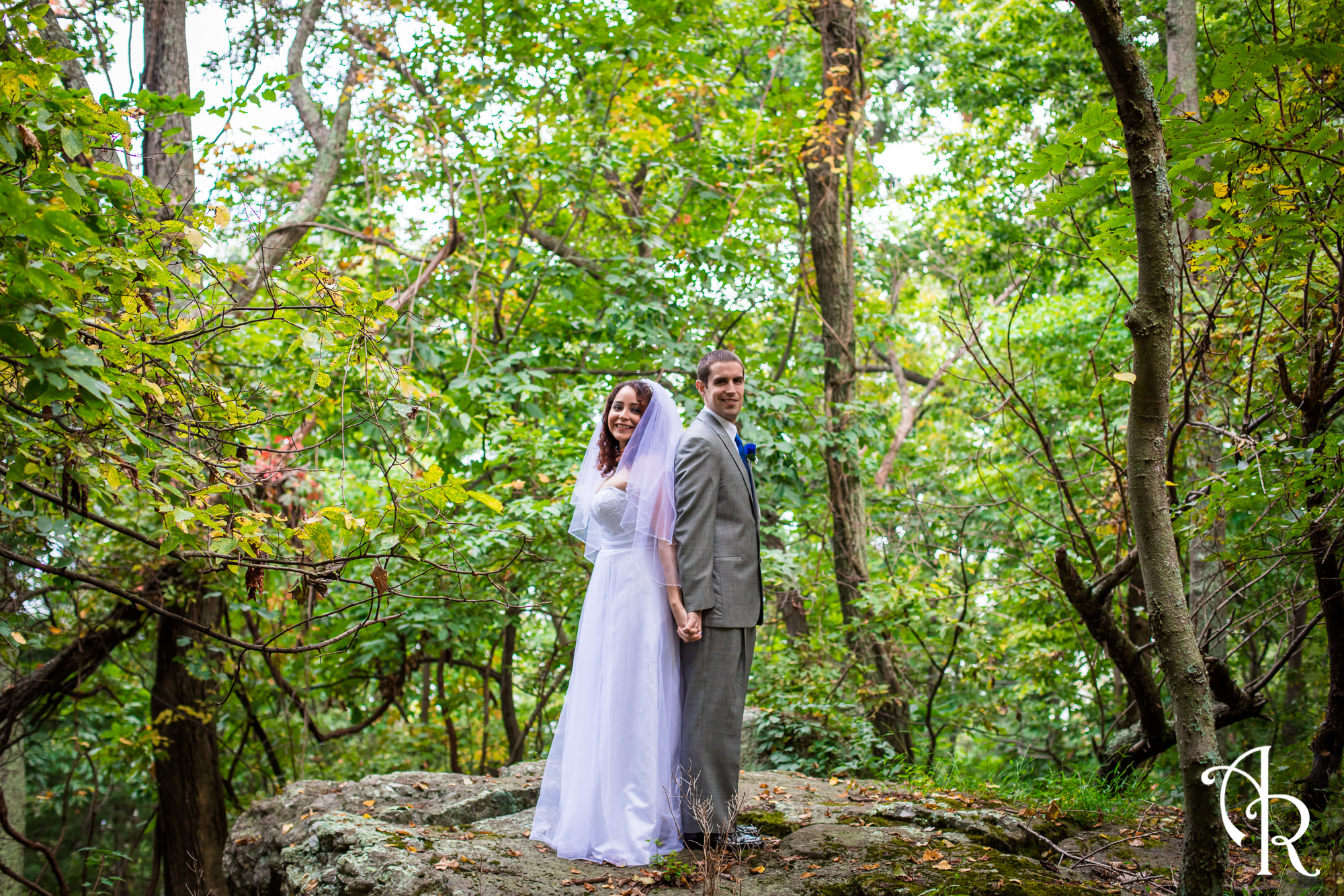 Chicago Absolutely affordable wedding photography